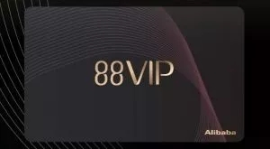 88VIP
